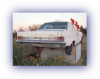 tn_1965-Rambler-Rebel-White-rear (17K)