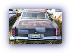 tn_1976-Oldsmobile-442-rear (19K)
